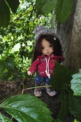 Berlingot 🌱 (Leegloo) Tags: pukifee pkf fairyland pukifée puki lee leegloo bjd ball jointed doll dolls luna