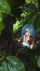 Coquille 🌱 (Leegloo) Tags: pukifee pkf fairyland pukifée puki lee leegloo bjd ball jointed doll dolls mio