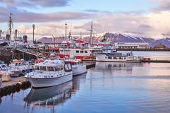 Iceland Harbour (archkoven13) Tags: 夕陽 sunset 海 風景 船 港口 碼頭 冰島 canon canon6d2 snow 雪景 海景 landscape iceland