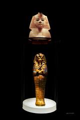 Toutânkhamon : Le Trésor du Pharaon (jeanenser) Tags: 2018 2019 art avions avionsanciens expositions france insolite laon paris toutânkhamon iledefrance