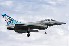 Eurofighter F-2000A Typhoon - 03 (NickJ 1972) Tags: nato tiger meet montdemarsan ba118 2019 aviation eurofighter ef2000 f2000 typhoon mm7322 3640