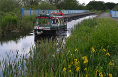 Rosebud crosses the aqueduct (Chrispics Photography) Tags: farnham walking festival