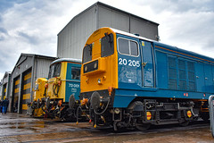 20205 + 73001 + 37190 - Crewe Diesel Depot Open Day 2019 - 08/06/19. (TRphotography04) Tags: british rail br blue 20205 73001 37190 seen lined up crewe diesel depot 2019 charity open day
