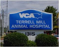 VCA Terrel Mill Animal Hospital   Marietta, Georgia (steveartist) Tags: signs businesssigns vcaterrellmillanimalhospital mariettaga powersferryroad trees bushes powerpoles sonydscwx220 photostevefrenkel