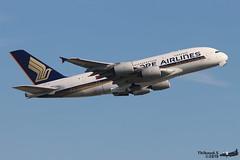 Airbus A380 -841 SINGAPORE AIRLINES 9V-SKK 051 Francfort juin 2019 (Thibaud.S.) Tags: airbus a380 841 singapore airlines 9vskk 051 francfort juin 2019