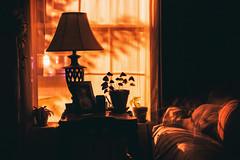 Restless (Sarah Rausch) Tags: 50mm 56 sony restless self selfportrait longexposure 13seconds le streetlight night windowwednsdays
