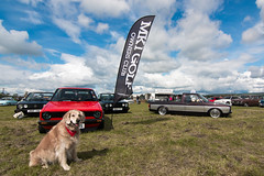 (Chris B70D) Tags: tayside classic car club carshow sunday weekend errol airfield scotland sunny couds canon 70d tokina 1116 ultrawide ultra wide angle lens panorama cars vw mk1 golf owners caddy volkswagen low custom retro slammed stance stretch performance scene dubs gti diesel petrol dog goldy golden retriever pup pet happy cute posed poser