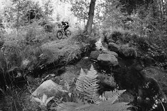 Well, take me back down where cool water flow, yeh (all martn) Tags: mtb singletrack all mountain trail bike riding