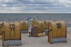 J50_1835_LR.jpg (jwendekamm) Tags: eintracht braunschweig ebs strandkorb sommerpause ostsee dahme blaugelb