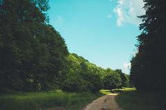 KRIS1540 (Chris.Heart) Tags: túra hiking hungary nature okt kéktúra