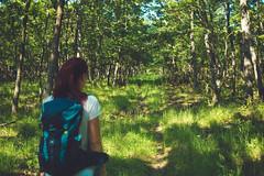 KRIS1363 (Chris.Heart) Tags: túra hiking hungary nature okt kéktúra