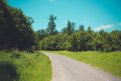 KRIS1438 (Chris.Heart) Tags: túra hiking hungary nature okt kéktúra