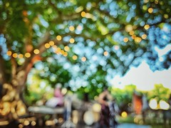 Jazz under the stars (Mister Blur) Tags: blur desenfoque blurry lights flicker tree top jazz band hacienda santo domingo hunxectamán yucatán méxico mood ambient under stars iphone xr iphoneography snapseed rubén rodrigo fotografía