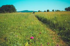 KRIS1344 (Chris.Heart) Tags: túra hiking hungary nature okt kéktúra