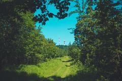 KRIS1378 (Chris.Heart) Tags: túra hiking hungary nature okt kéktúra
