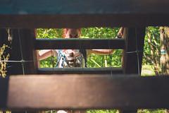 KRIS1398 (Chris.Heart) Tags: túra hiking hungary nature okt kéktúra
