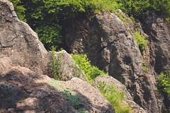 KRIS1477 (Chris.Heart) Tags: túra hiking hungary nature okt kéktúra