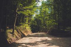 KRIS1685 (Chris.Heart) Tags: túra hiking nature okt hungary természet