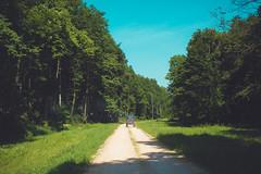 KRIS1652 (Chris.Heart) Tags: túra hiking nature okt hungary természet