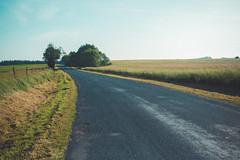 KRIS1573 (Chris.Heart) Tags: túra hiking nature okt hungary természet