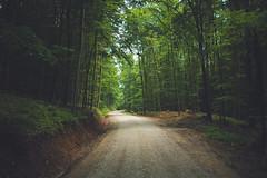 KRIS1688 (Chris.Heart) Tags: túra hiking nature okt hungary természet