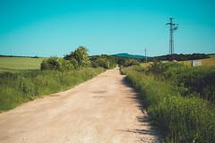 KRIS1326 (Chris.Heart) Tags: túra hiking hungary nature okt kéktúra
