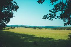 KRIS1359 (Chris.Heart) Tags: túra hiking hungary nature okt kéktúra