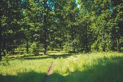 KRIS1400 (Chris.Heart) Tags: túra hiking hungary nature okt kéktúra
