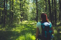 KRIS1372 (Chris.Heart) Tags: túra hiking hungary nature okt kéktúra