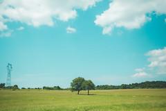 KRIS1462 (Chris.Heart) Tags: túra hiking hungary nature okt kéktúra
