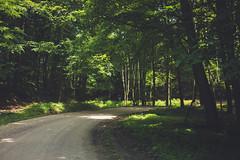 KRIS1683 (Chris.Heart) Tags: túra hiking nature okt hungary természet
