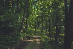KRIS1613 (Chris.Heart) Tags: túra hiking nature okt hungary természet