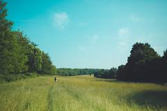 KRIS1575 (Chris.Heart) Tags: túra hiking nature okt hungary természet