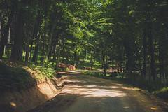KRIS1672 (Chris.Heart) Tags: túra hiking nature okt hungary természet