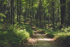 KRIS1662 (Chris.Heart) Tags: túra hiking nature okt hungary természet