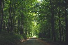 KRIS1677 (Chris.Heart) Tags: túra hiking nature okt hungary természet