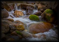 CF000435_PD (cwaynefox) Tags: fall mountains