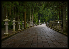 Koyasan Path (cwaynefox) Tags: 068ar koyasan openedition fineart gallery landscape path scenic