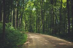 KRIS1668 (Chris.Heart) Tags: túra hiking nature okt hungary természet
