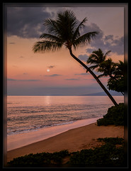 Maui Moon (cwaynefox) Tags: hawaii maui moon moonrise openedition usa unitedstates beach fineart gallery landscape ocean scenic