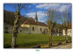 CHAPELLE SAINTE-ANNE de L'ABBAYE DE CLAIRVAUX (régisa) Tags: clairvaux chapel chapelle abbaye abbey sainteanne villesouslaferté aube tree arbre