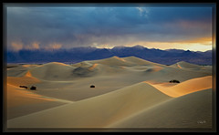 Windswept Dunes (cwaynefox) Tags: deathvalley deathvalleynationalpark limitededition southwest usa unitedstates california desert fineart gallery landscape sanddunes scenic