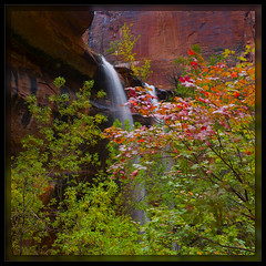Twin Falls in the Fall (cwaynefox) Tags: emeraldpools fall limitededition southernutah southwest usa unitedstates waterfall zion zionnationalpark fineart gallery landscape scenic utah