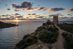 Golden Bay, Malta (james.createmedia) Tags: sunset malta goldenbay bay beach tower