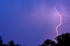 Side Winder (Robin Shepperson) Tags: storm lightning night evening blue pink weather thunderstorm thunder flash berlin germany deutschland trees wind d3400 nikon 55200mmv1