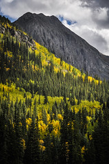 CO 110, Colorado. (Marie-Laure Even) Tags: 2014 america american américain arbre aspen automne autumn co110 cloud color colorado colour couleur etatsunis fall fjall folliage forest forêt landscape marielaureeven montagne mountain nature nikond5000 northernamerica nuage paysage roadtrip september septembre travel tree usa unitedstatesofamerica voyage wood yellow гора природа