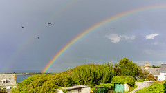 Photo of Estuary rainbow