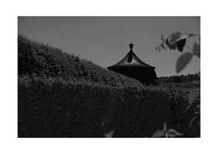 27 [titre compliqué] (Armin Fuchs) Tags: arminfuchs lavillelaplusdangereuse veitshöchheim anonymousvisitor thomaslistl wolfiwolf jazzinbaggies diagonal schlosspark pavillon branches trees challenge fujixt3