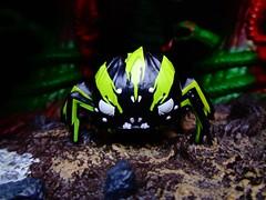 Warrior Spider (ridureyu1) Tags: dontstarve funko pop funkopop bobblehead mysterymini toy toys actionfigure toyphotography sonycybershotsonycybershotdscw690