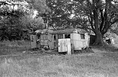 Better Homes And Gardens (ripsdante) Tags: betterhomesandgardens blackandwhite craigbrewer craig brewer architectural architecture old vintage abandoned dilapidated weathered rv rural photograph wooded landscape williamsburg virginia 1970s 35mmfilm grain homeimprovement home house country poverty